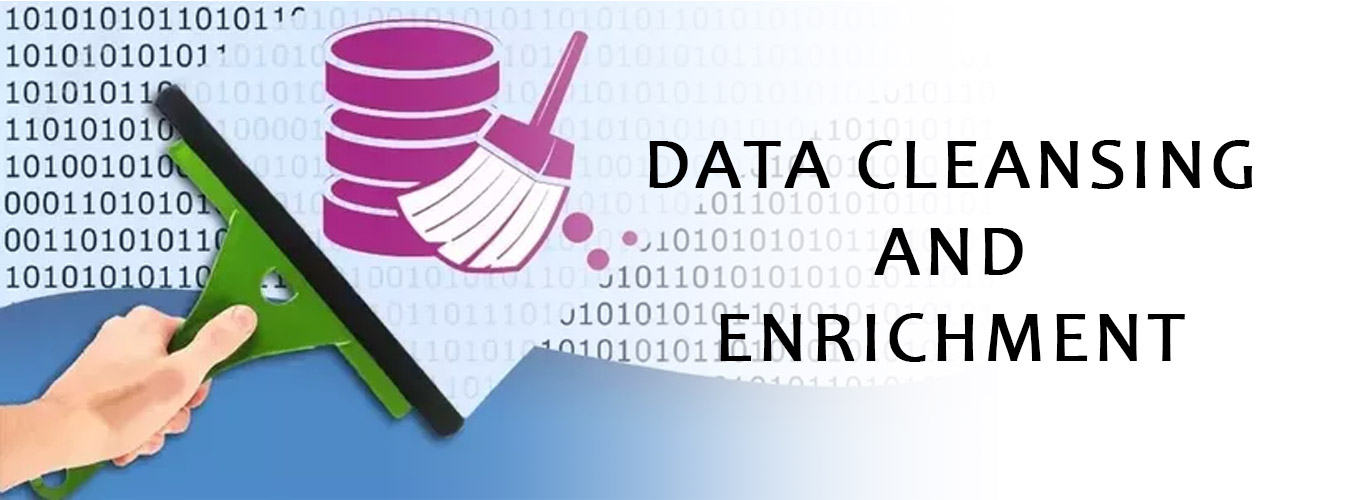 Data Cleansing and Enrichment
